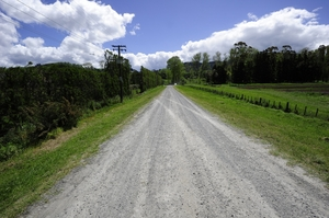 Skid marks can still be seen on Hikurangi Rd in Katikati.