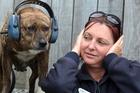 Whangarei SPCA education officer Rachael Wyatt  wants fireworks banned.