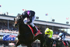 Damien Oliver riding #6 Fiorente wins the Emirates Melbourne Cup during Melbourne Cup Day at Flemington Racecourse. Photo / AP