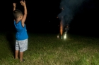 Fireworks are a delight for young and old alike but can cause fire damage, severe injuries and also traumatise pets.