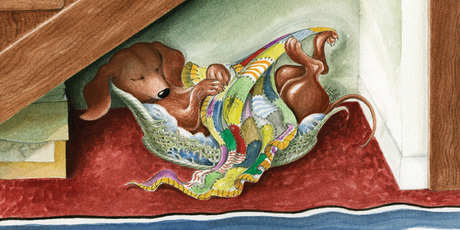 Schnitzel von Krumm, despite his posh name, loves his old basket. Illustration / Lynley Dodd