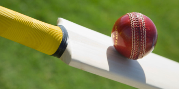 The nationwide scheme is aimed at supporting New Zealand cricket at a community level. Photo / Thinkstock