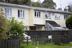 State housing in the Auckland suburb of Sandringham. Photo / NZ Herald