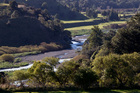 A wide range of views from growers and farmers are expressed in submissions lodged with the board of inquiry into the Tukituki Catchment Proposal. Photo / File