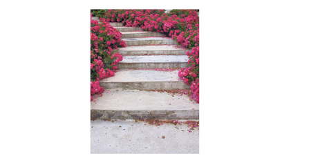 Pink stairs, Drocourt. Photo / Karen Inderbitzen-Waller and Delphine Avril Planqueel.