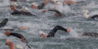 Swimmers race across harbour