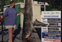 Michelle Goodhew's shark record still stands today. Photo / Mark Mitchell