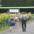 Only 10 more vineyards to go Photo / James Elliston