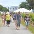 People make their way through the vineyards Photo / James Elliston
