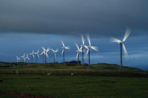 Wind turbines at one of Trust Power's wind farms near Palmerston North Photo/Mark Mitchell