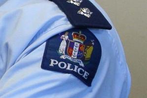 Waitemata police bosses began a criminal investigation into the allegation and suspended Mr English. Photo / File