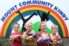 Honour Rikihana, 4, Andre Drew, 5, Zoe Ballot, 4 and Zac Simeon, 4, of Mount Community Kindy, are collecting for the Bay of Plenty Times Christmas Appeal. Photo / Joel Ford