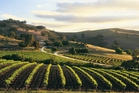 You don't have to be a wine buff to appreciate the heritage and culture of the Barossa.