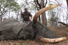 Mark Gunton with an elephant he shot while on a hunting trip to Africa, believed to have been in 2011.