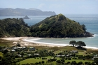 Overlooking Medlands Beach on Great Barrier Island. Photo / Natalie Slade