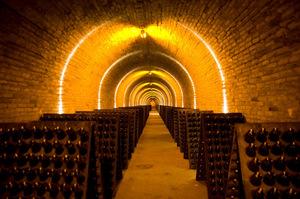 Krug wine cellar. Photo / Supplied.