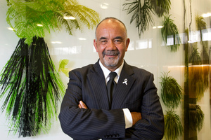 Maori Party co-leader Te Ururoa Flavell. Photo / Mark Mitchell