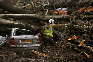 A tree surgeon works to remove a tree, blown down by the wind onto a car, in Davidsons Mains, Edinburgh, Scotland. Photo / AP