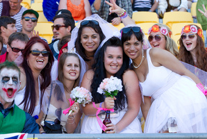 Fans have been having a good time at the Sevens. Photo / Mark Mitchell