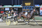 Caribbean Blaster, 13, driven by Kate Gath wins the Victoria Cup in December. Photo / Harness Racing Victoria