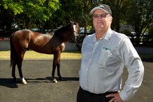 Breeder Peter Archer should receive a good price for his Zabeel-Gwen's Rules colt at Karaka today. Photo /
