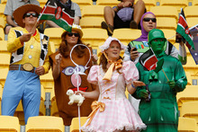 Fans enjoying the Sevens tournament. File photo / Mark Mitchell
