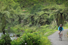 The Karangahake Gorge. File photo / Greg Bowker