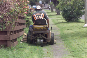 Ending berm trims would put ratepayers on an equal footing. Photo / APN