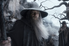 Sir Ian McKellen stars in 'The Hobbit: The Desolation of Smaug'. Photo / AP