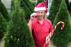 Brendan Kell from Festivity Christmas Trees embraces the Christmas spirit. Photo / Doug Sherring
