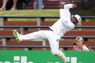 Tino Best of the West Indies drops a catch from Trent Boult. Photo / Getty Images