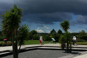Sunshine and dark clouds at the Auckland Botanical gardens today. Photo / Adeline Lo