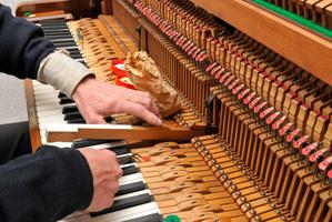 Jonathan Mason is an Auckland piano tuner. Photo / Thinkstock