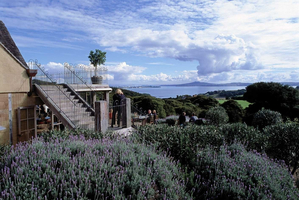 Mudbrick Vineyard is one of several cellar doors on the island that comes with a great restaurant.