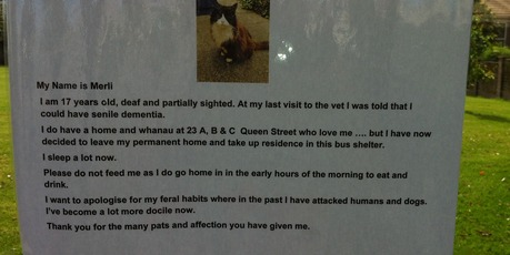 This note was left in the bus stop to explain the snoozing cat.