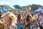The crowd enjoying the music at Splore. Photo / Liam Golds