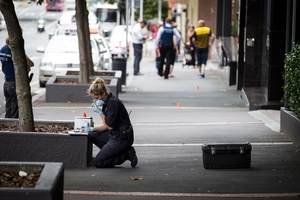 Police search for clues in Albert St.