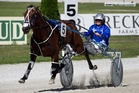 Isaiah is all alone winning the Sales Series Pace at Alexandra Park yesterday.Picture / Natalie Slade