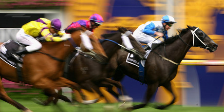 Mufhasa will return to Caulfield, where he won the 2011 Toorak Handicap (above), on Saturday. Photo / Getty Images