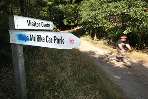 A man remains in a critical condition after an accident while mountain biking in Whakarewarewa Forest. Photo / Ben Fraser