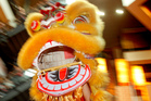 Dragon dancing and other traditions are on show for Chinese New Year celebrations. Photo / Natalie Slade
