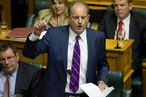 The vote on David Shearer's leadership is a requirement of the Labour Party's constitution. Photo / Mark Mitchell
