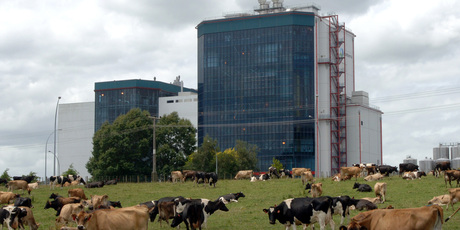 Chinese dairy giant Yashili plans to build a $210m factory near Pokeno, Waikato. Pictured - Fonterra's Te Rapa dairy factory. Photo / Bay of Plenty Times
