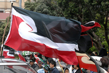 The Maori flag. Photo / File