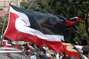 The Maori flag. Photo / File