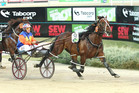 Ohoka Punter capped off a great night for the Kiwis by winning the Victoria Derby. Photo / Stuart McCormick