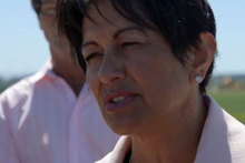 Education Minister Hekia Parata in Christchurch today. Photo / Herald Online Video