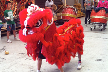 E-pacs Dragon and Lion Dance. Photo / Supplied