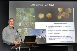 Aespri Symposium run by the New Zealand Plant Protection Society. Photo / Bay Of Plenty Times