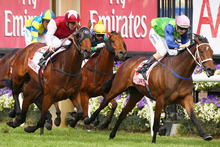Sangster (right) is carrying some weight in tomorrow's $85,000 Avondale Gold Cup at Ellerslie. Photo / Getty Images